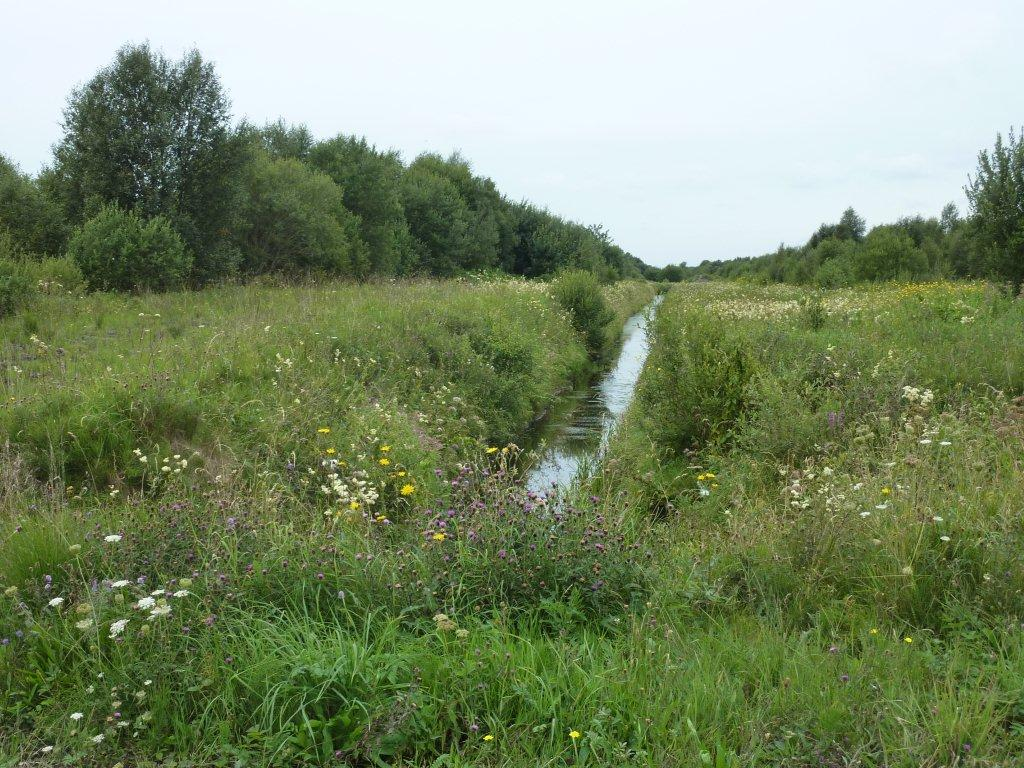 crabtree-river-at-lullybeg-reserve
